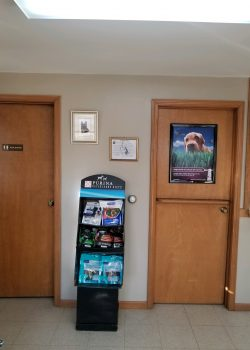 Dog food display - Animal clinic in Freeville, NY
